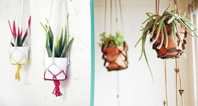 suporte-de-macramê-para-pendurar-plantas-dentro-de-casa-diy-dicas-tendência-decoração (4)