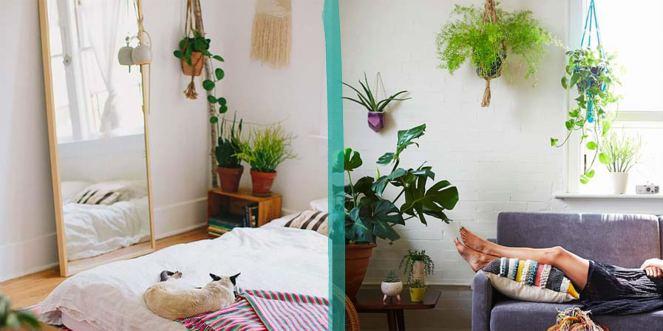 suporte-de-macramê-para-pendurar-plantas-dentro-de-casa-diy-dicas-tendência-decoração (7)